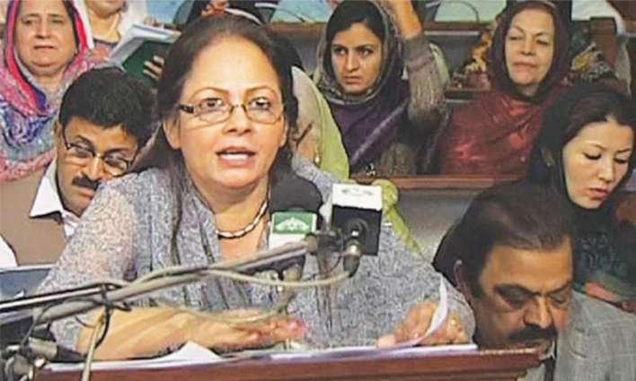 Punjab govt's financial discipline role model for other provinces: minister
