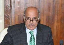 حاكم لإقليم البنجاب: استقرار اقتصادي ضروري للتقدم في البلاد