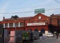 لاہور دے میو تے سروسز ہسپتال وچ چوہیاں دا راج، روگی پریشان