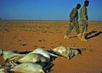 Drought may add famine to Somalia's humanitarian woes