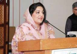 PTI wants court decision at their own wishes: Anusha