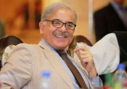 The court does not intend to call CM Shahbaz Sharif: SC