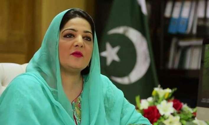 وزيرة الدولة لتكنولوجيا المعلومات: حركة الإنصاف الباكستانية تغير موقفها حول وثائق