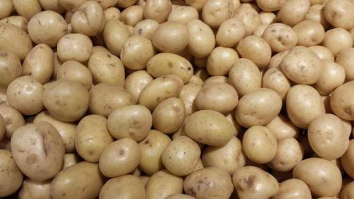'Farmers advised to complete potato harvest by January 31'