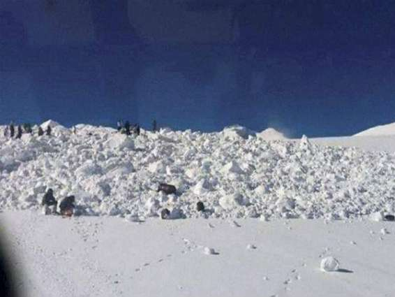 Children among many feared dead in Italy avalanche