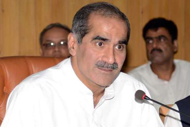 PTI failed to produce single evidence in Panama papers case: Saad Rafique