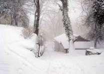 ایران دے مقدس شہر مشہد اچ برفباری