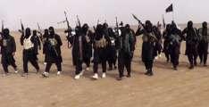 ترکی، داعش نا 5 شکبر جنگوڑو دزگیر