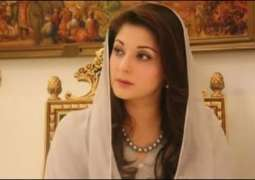Overwhelmed to see the support for PM: Maryam Nawaz