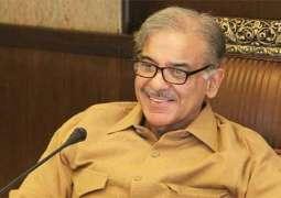 رئيس وزراء حكومة إقليم البنجاب الباكستاني: حكومة رئيس الوزراء نواز شريف تسعى كل ما بوسعها للتغلب على أزمة الطاقة في البلاد بحلول عام 2018