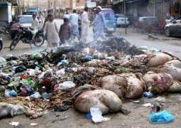 FWMC to spend Rs 10 mln on cleanliness during Eid holidays