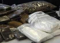 پاکستان افیون دی پیداوارتوں پاک ملک بنڑ گیا ہے،وفاقی وزیر انسداد منشیات لیفٹیننٹ جنرل (ر) صلاح الدین ترمذی دا ایوان بالا اچ جواب
