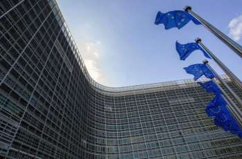 Eurozone private business growth picks up: PMI