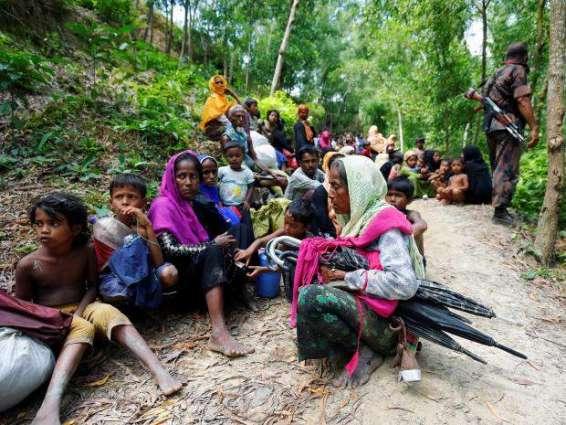 Saud Majeed condemns killings of Rohingya Muslims