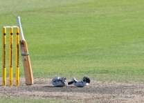 Bahawalpur wins NBP T-20 Blind Cricket Trophy