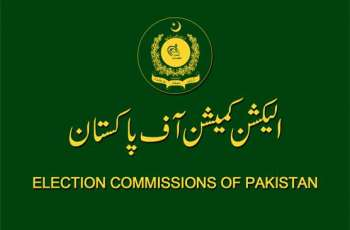 UNDP to provide $23 million to ECP for training and modernizing election pricess