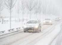 Snow grounds flights at Dutch airports