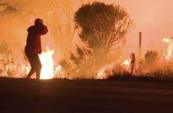 کیلیفورنیا دی جنگلاں اچ لگی بھا بنہاں علاقیاں تئیں پج گئی