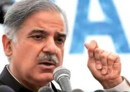 Shehbaz, Achakzai condemn opposition tirade against Parliament
