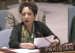 Pakistan raises Kulbhushan Jadhav's case in UNSC debate