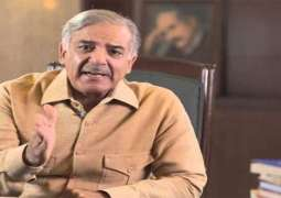 Protesting parties will be defeated in the general election: Shehbaz Sharif