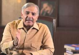 PML-N to respond to baseless allegations of opponents via public service: CM Shehbaz