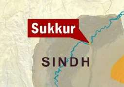 Five critically injured in Sukkur accident