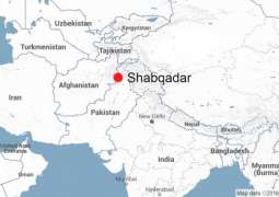 Student guns down college principal in Shabqadar
