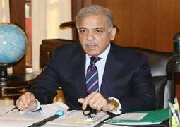 KP Industrialists' delegation discusses matters of bilateral interest with CM Shehbaz