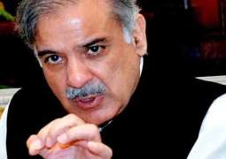 PML-N govt sets example of public service, transparency: Shehbaz