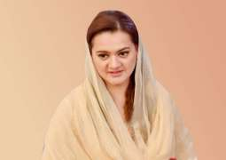Marriyum Aurangzeb urges journalists to play constructive role