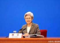 China not to export its ideology or political system: Fu Ying