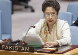 Pakistan calls for equitable representation in efforts to restructure UNSC