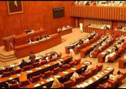 PPP candidates file nomination papers for Senate polls