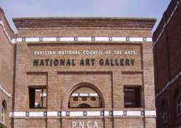 National Artists Convention a moot of renowned artists from all fields: Jamal Shah