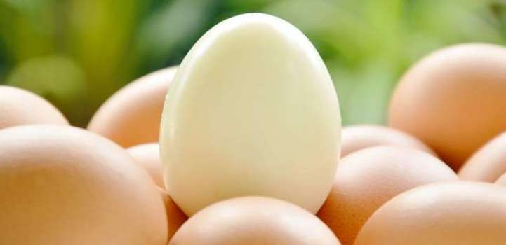 Cracking discovery: Japan scientist uses egg white for clean ener ..