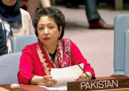 Military escalation in Afghanistan will erode peace prospects: Maleeha Lodhi