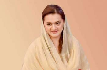 Minister of state for Information had important role in highlighting positive image of Pakistan at globel level: Marriyum Aurangzeb