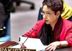 Pakistan to continue support to Kashmir cause: Maleeha Lodhi