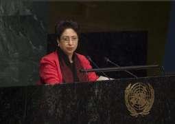 Pakistan calls for effective implementation of UN energy goal