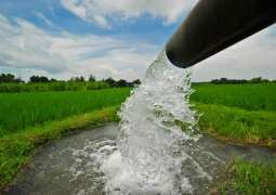 500 rice growers educated on water efficient techniques to ensure sustainable rive production