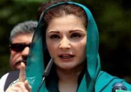 Masses to even vote for Asif's shadow now: Maryam Nawaz