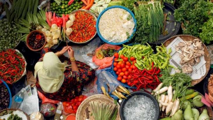 Un Food And Agriculture Organization Pakistan