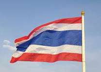Thai politicians charged as dissent grows before coup anniversary