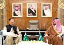 Pakistan, Saudi Arabia vow to further strengthening of economic cooperation