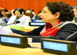 Pakistan opposes induction of more members in UNSC