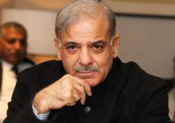 Performance of PML-N's govt role model for all others: Shehbaz Sharif