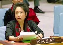 Pakistan's Ambassador Maleeha Lodhi urges UN to implement resolutions regarding Kashmir, Palestine at International fora
