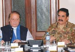 Journalist tells why PMLN played song in Raheel Sharif's favor