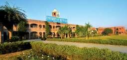 پنجاب یونیورسٹی امتحانی نتائج دا اعلان کرڈتے